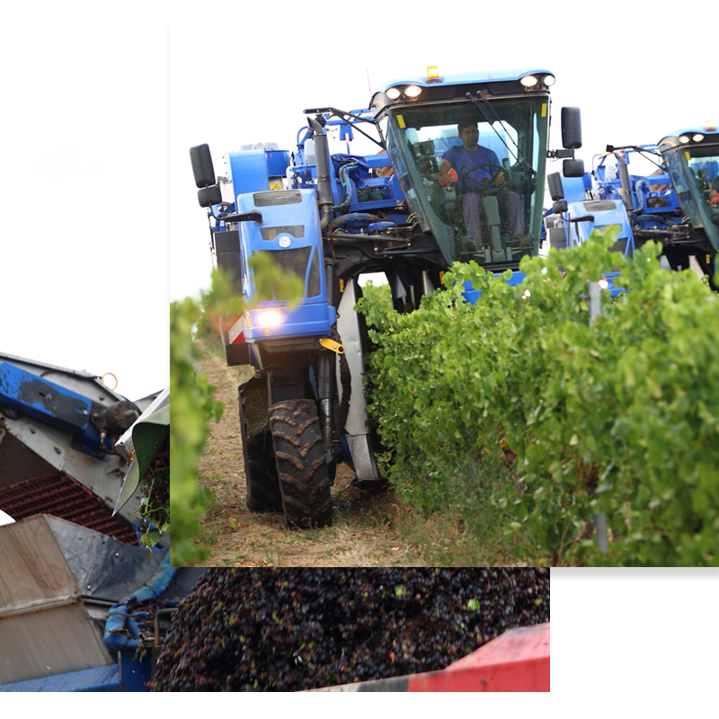 Maquinaria para la vendimia y oliva Ortigosa